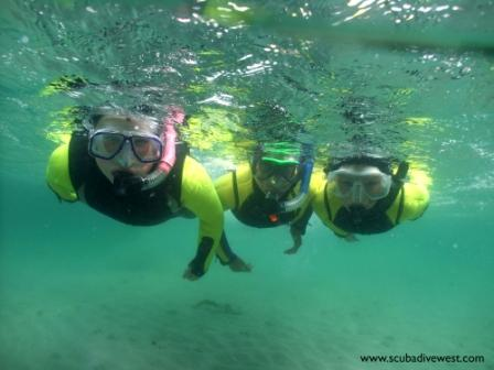 Discover Snorkelingsmall